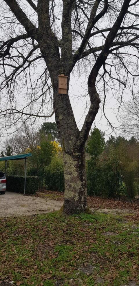 Abri 868 installé rue Paul Verlaine à Blanquefort