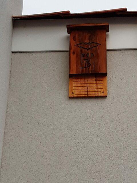 Jerome ,rue de Guyenne, nichoir installé plein sud